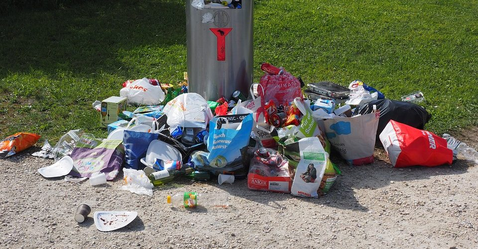 featured image of the blog titled Tips On Holiday Waste From The Best Dumpster Rental In Centennial, CO